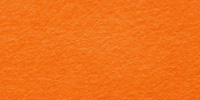 Orange WWF004