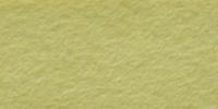 Light Olive WWF013