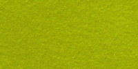 Bright Moss WWF043