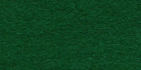 Evergreen WWF046