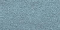 Dusty Blue WWF057