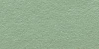 Dusty Mint WWF068