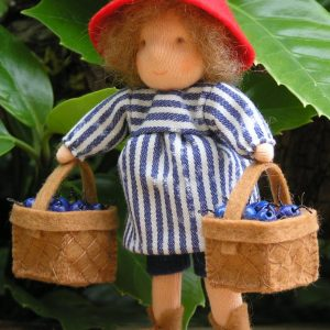 PETER IN BLUEBERRY LAND KIT ANK201